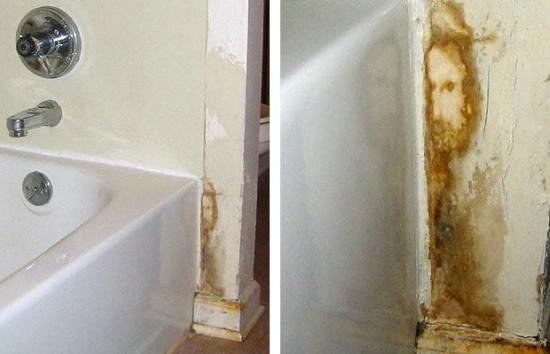 Where Is Jesus CynicalC - Water stains on walls in bathroom